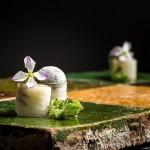 Steinbeisser's Experimental Gastronomy