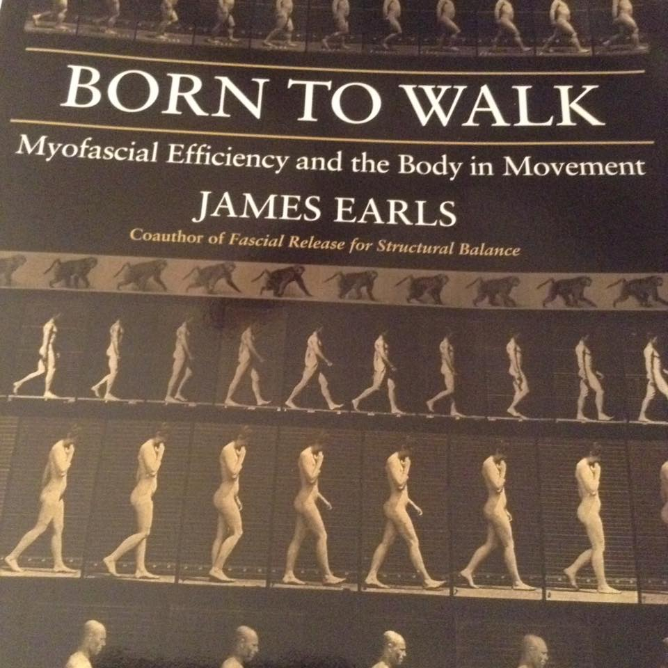 Born To Walk by James Earls Reviewed by Lee Artur